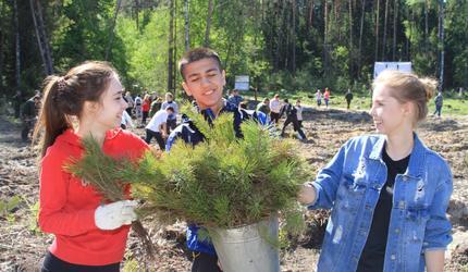 Шатурские выпускники приняли участие в акции «Лес Победы»