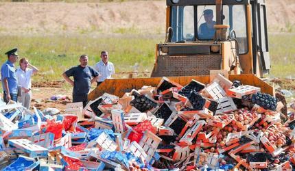 Роспотребнадзор призвал к запрету уничтожения продуктов