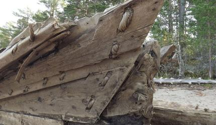 Директор Института Наследия расскажет об уникальной археологической находке