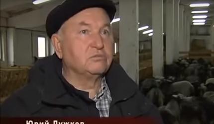 В гостях у Юрия Лужкова