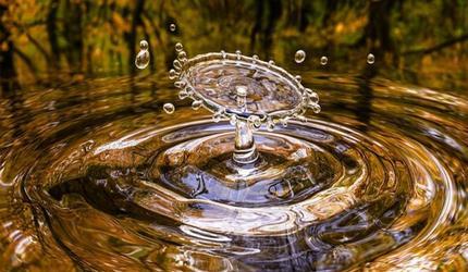 Эксперты WRI предрекли мировой водяной кризис