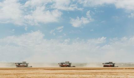 Ростсельмаш приглашает на льняное поле