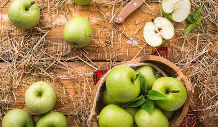 Россельхознадзор запретил ввоз растительной продукции из Китая