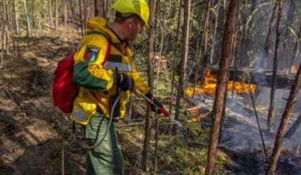 Пожары в Сибири больше не угрожают жизни людей