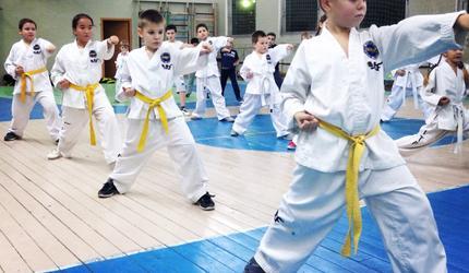 Тхэквондисты из Люберец завоевали золото на чемпионате и первенстве ЦФО