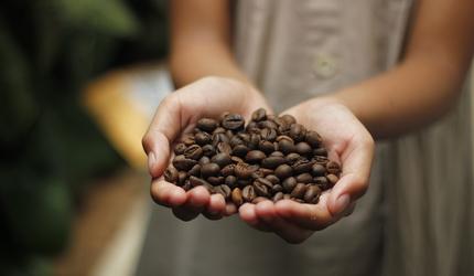 Кофе: вредная привычка или польза для организма?