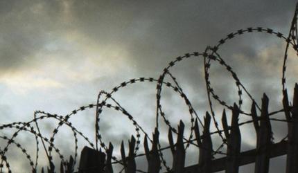 Каждый второй россиянин высказался за возвращение смертной казни