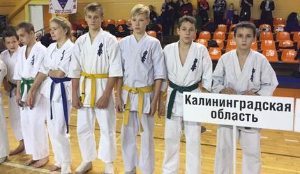 Из Великого Новгорода досаафовские каратисты привезли два «золота» и «бронзу»