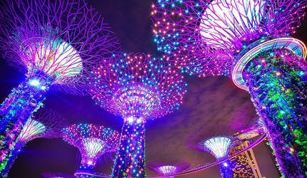 Почему Сингапур не страшит коронавирус?