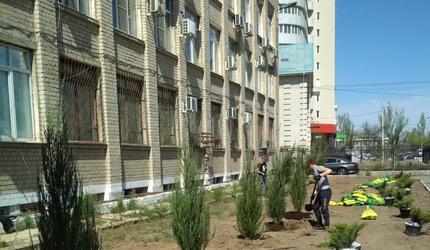 Аллея воинской славы создается у ДОСААФ Астраханской области