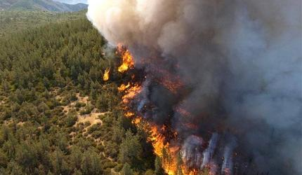 В МЧС назвали число действующих природных пожаров в Якутии