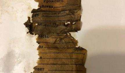 Поисковики ДОСААФ обнаружили останки бойца РККА в Подмосковье