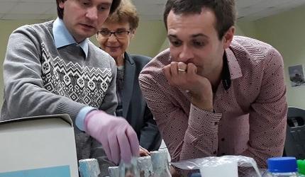 Ученые помогут защитить сельскохозяйственные культуры от вредоносных грибов