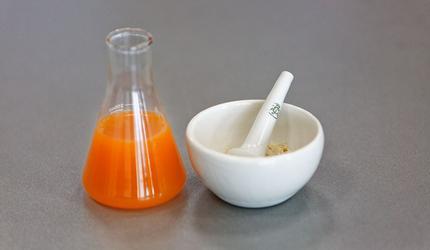 Биотехнологи ДВФУ создали экзотический напиток из медузы и цитрусов